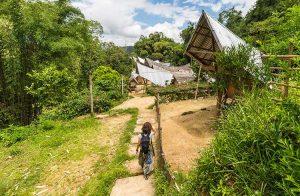 природата в Индонезия
