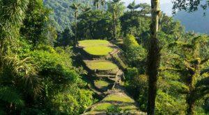 Природата в Колумбия