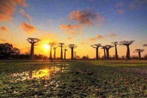 времето в Мадагаскар