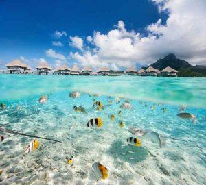 Гмуркане в Малдиви