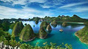 Природата в Папуа Нова Гвинея