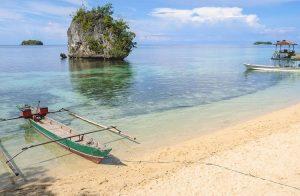 Плажове в Сейнт Винсънт и Гренадини
